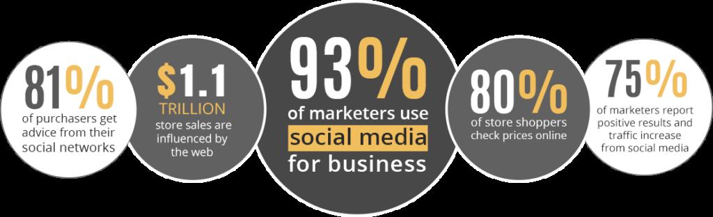 Blue Bird Media - Digital marketing agency